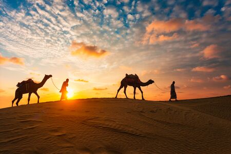 Indian cameleers camel driver with camel silhouettes in dunes on sunset. Jaisalmer, Rajasthan, India