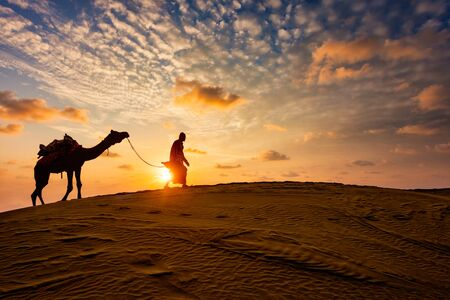 Indian cameleer camel driver with camel silhouettes in dunes on sunset. Jaisalmer, Rajasthan, India Фото со стока