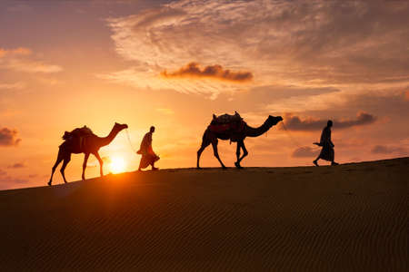 Indian cameleers camel driver with camel silhouettes in dunes on sunset. Jaisalmer, Rajasthan, India Foto de archivo