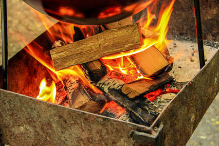 smolder: crest of flame on burning wood in fireplace