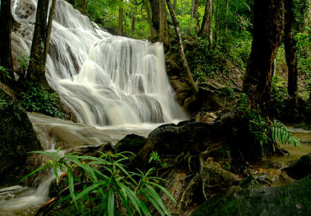 tat: Pha Tat Waterfall is a three-tiered waterfall located deep inside the KhueanSrinagarindra National Park In Thailand.