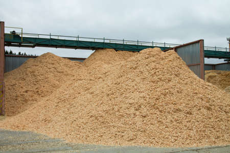 sawmill: Piles of sawdust in the sawmill area outdoor. Stock Photo