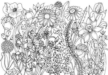 background with doodles, flowers, leaves. Nature design for relax, meditation. pattern black and white illustration can be used for coloring book pages for kids and adults.