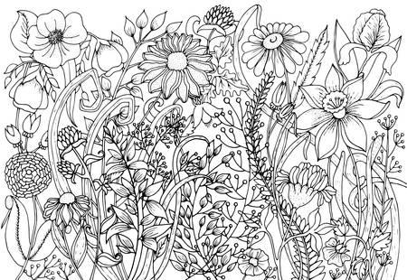 Hintergrund mit Kritzeleien, Blumen, Blätter. Nature Design für Entspannung, Meditation. Muster Schwarz-Weiß-Abbildung kann zum Färben von Buchseiten für Kinder und Erwachsene verwendet werden. Vektorgrafik