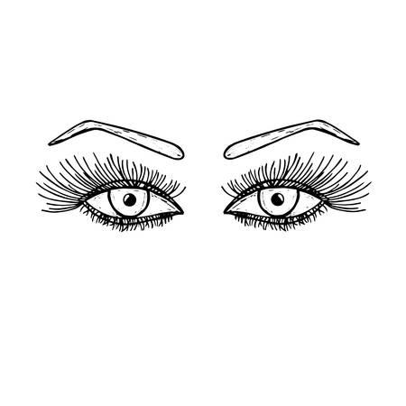long eyelashes: eyes with long eyelashes. Women, female eye with an eyebrow. Fashion, beauty, trend. illustration.