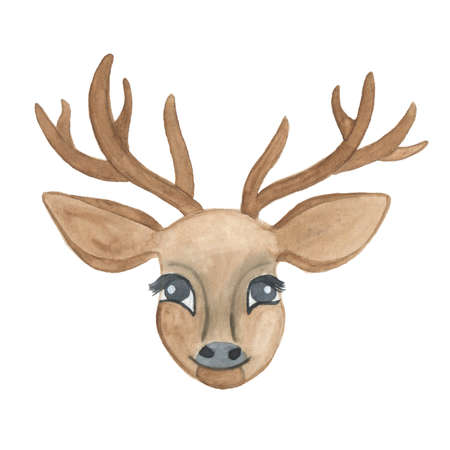 horny: Watercolor deer head with antlers isolated on white background. Perfect for wedding, holidays, invitation, birthday Stock Photo