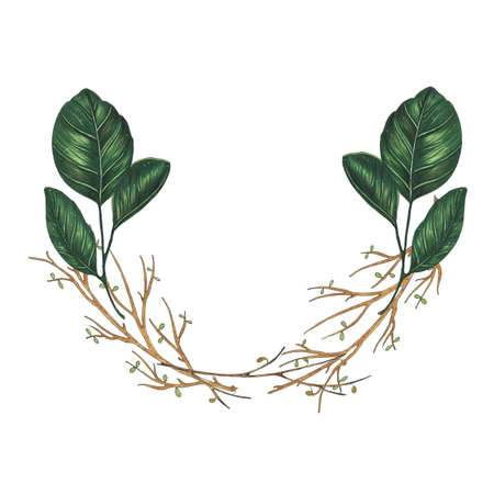 Hand painted with markers floral wreath with twig, branch and green abstract leaves. Botanical illustration isolated Standard-Bild