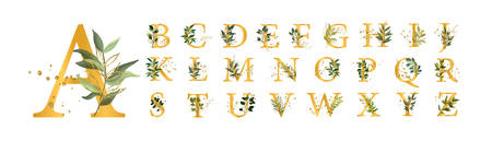 Letras mayúsculas de fuente de alfabeto floral dorado con hojas de flores y salpicaduras de oro aisladas sobre fondo blanco. Ilustración de vector para boda, tarjetas de felicitación, diseño de plantillas de invitaciones