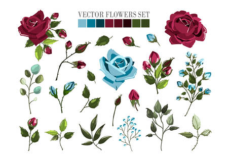 Set of bordo burgundy and navy blue rose flowers and green leaves. Maroon floral bouquets, branch, arrangements for wedding invitation save the date or greeting card design. Vector illustration Иллюстрация