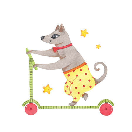 Watercolor circus animal cute dog riding on scooter isolated on white background. Happy birthday party, festive carnival decoration printable nursery for kid textile illustration Фото со стока