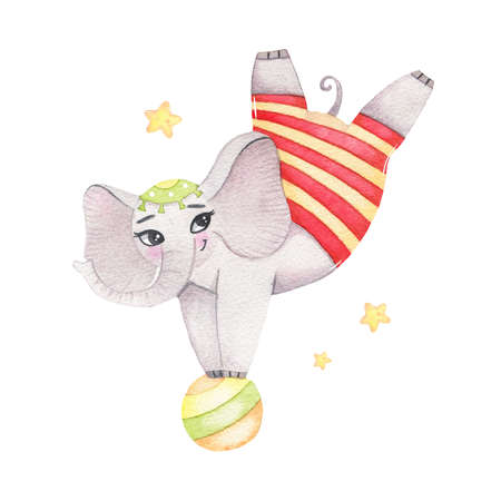 Watercolor circus animal cute acrobatic elephant on ball isolated on white background. Happy birthday party, festive carnival decoration printable nursery for kid textile illustration
