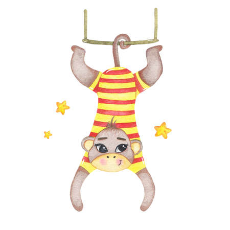 Watercolor circus animal monkey hanging on swing isolated on white background. Happy birthday party, festive carnival decoration printable nursery for kid textile illustration