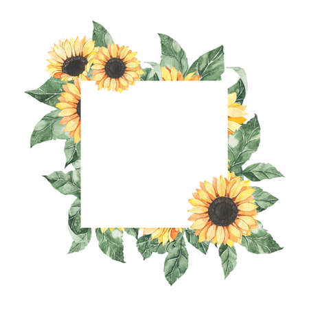 Watercolor summer frame with sunflowers bouquet with green leaves isolated. Floral spring autumn geometric frame blossom boho illustration wedding invitation save the date card