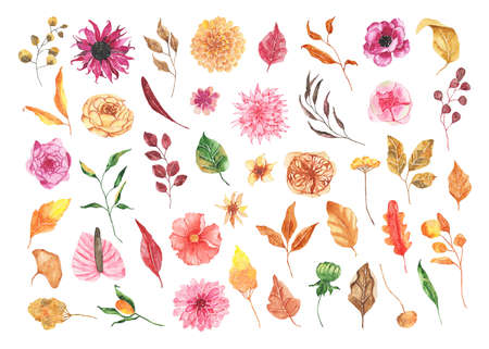 Watercolor autumn floral elements with flowers roses dahlia peony calla lily orange greenery leaves foliage isolated on white background. Fall floral bohemian boho illustration for wedding invitation