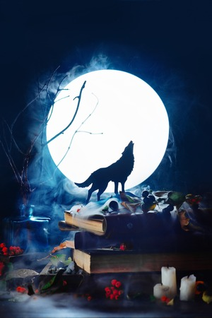 Howling wolf silhouette with full moon in a dark Halloween still life. Magical equipment with candles and smoke. Mystic night scene with copy space. Stock Photo