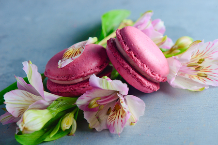 Pink macaroon close-up with spring flowers and buds. French dessert on a blue stone background with copy space.