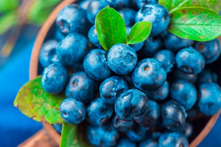 Blueberries close-up. Ripe and sweet summer berries macro. Natural beauty, blue and gray palette, copy space Standard-Bild
