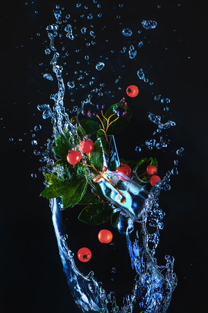 Green leaves and red berries in glass bottles in a splash of water on a dark background. The high-speed spring concept with copy space Standard-Bild