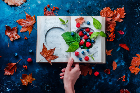 Secret storage book with last summer berries under an autumn rain. Preserving fleeting joys concept with copy space Standard-Bild