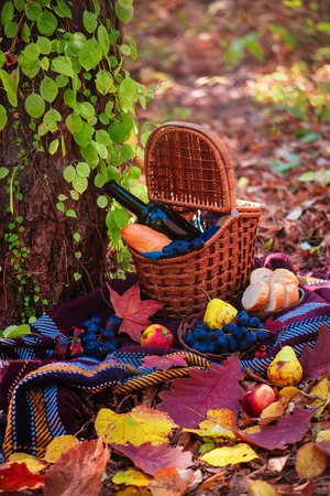 Picnic basket with a wine bottle and baguette in an autumn forest in sunlight with copy space. Picnic still life on location