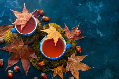 Autumn drink photography with hot tea in blue ceramic cups and fallen maple leaves on a wet dark background with copy space. Seasonal header with drink