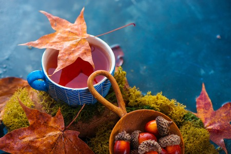 Autumn tea header with blue ceramic cup, acorns in a wooden scoop and fallen maple leaves. Seasonal drink photography on a wet dark background with copy space.