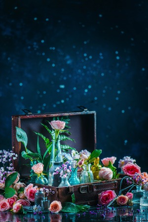 Flower collection in vintage glass jars, vases, and vials in a suitcase. Botany and perfume concept on a dark background with copy space Standard-Bild
