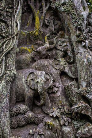 elephant carving on tree