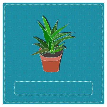 aloe vera plant: Hand drawn aloe vera plant in a flowerpot. Vector Illustration. Illustration