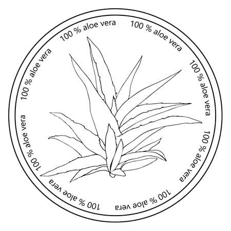 aloe vera plant: Hand drawn isolated vector illustration of aloe vera plant in a round frame with text 100% aloe vera. Illustration