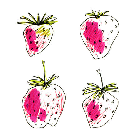 Strawberry in sketch hand drawn style, illustration isolated on white background. Stok Fotoğraf