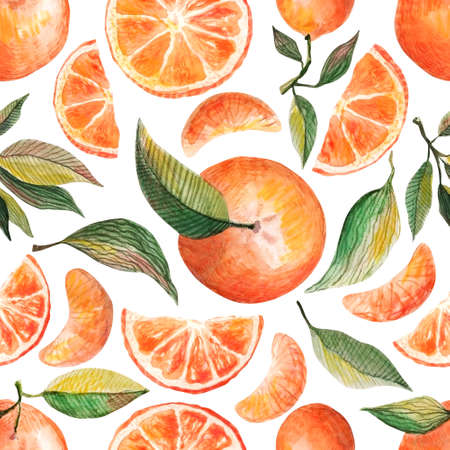 Watercolor seamless pattern with oranges tangerines citrus fruits green leaves isolated on white background. Fruit repeated background. Botanical illustration for fabric textile cosmetics and product packaging