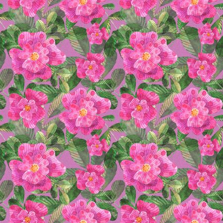watercolor stylized pink dog roses seamless pattern on pink background
