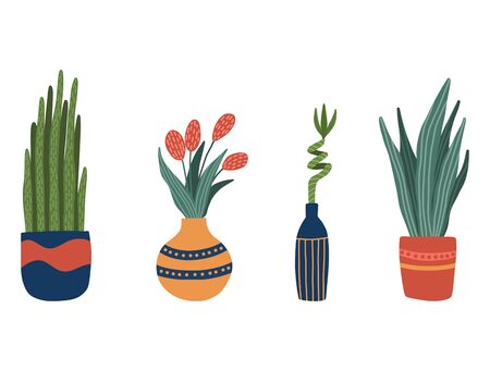 Set of house indoor plants in cartoon style. Cute trendy houseplants in pots and vases. Green natural decor for home and interior. Vector illustration close up.