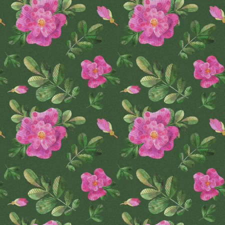 Watercolor stylized dog roses seamless pattern for printing on fabric, gift wrapping paper, for creating design postcards, invitations. Archivio Fotografico
