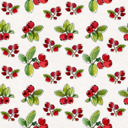 Lovely autumn background with cranberries, red berry. Nordic berries. Hand-drawing botanical seamless texture on a white background. Watercolor background. North Berries. Use for textile print, wrapping paper, packaging design food, jam, juice, ice cream, cosmetics.