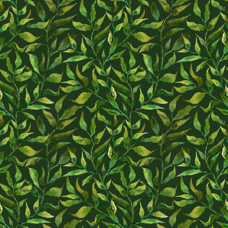 Seamless pattern with stylized leaves. Floral endless pattern filled with green leaves. Fresh greenery background, wallpaper, textile print.Watercolor hand drawn illustration on a dark background. Monochrome flowers,leaves, herbs background. Stok Fotoğraf