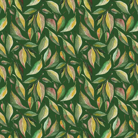 Green leaves watercolor seamless pattern. Botanical painting illustration on green background. Summer Hand drawn illustration. Herbs for cosmetics, package, textile, cards, decoration Stok Fotoğraf