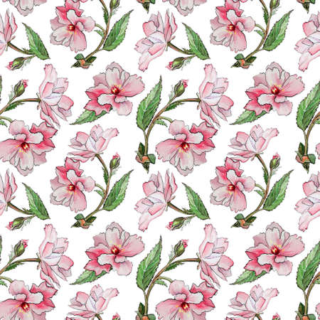 Seamles pattern with Spring japanese sakura with pink flowers on white background. Hand Drawn Cherry Blossoms floral illustration.