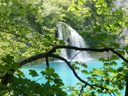 Colorful and vibrant landscape of lake shore. Tranquil landscape Useful as background. Lower lakes canyon. Plitvice Lakes National Park, Croatia
