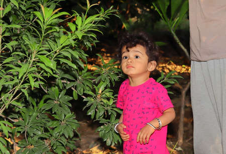 A beautiful Indian child smiles at the Chiku plant in the garden, indian child portrait in garden