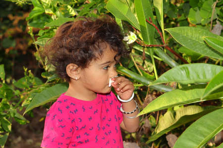 A beautiful Indian child smells a white jasmine or champa flower in the garden, india