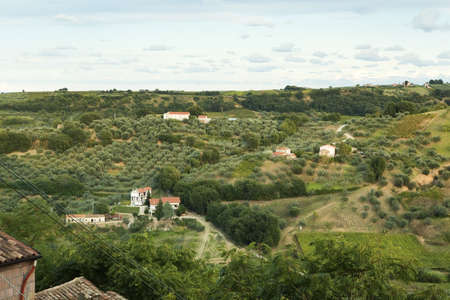 Typical panorama of villas, farmhouses and vineyards in Abruzzo, Italy photo