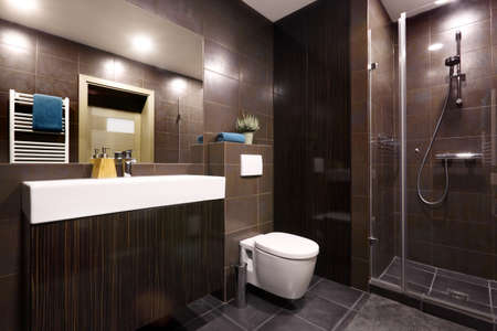 dryer  estate: Interior - modern private bathroom decorated in dark chocolate colors