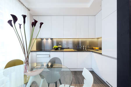 reg: Interior - white modern kitchen and a glass dining table with chairs