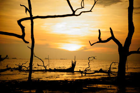 Sunset scenery at Kelanang Beach