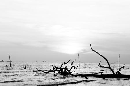 Scenery at Kelanang Beach