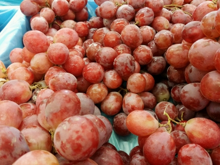 sold small: Seedless grapes piled for retail at the market
