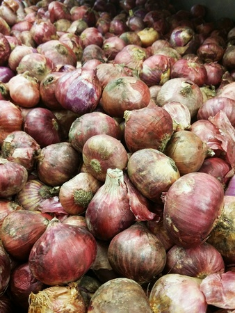 red onions: Unpeeled big red onions piled for retail at the market