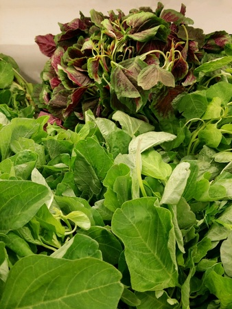 Fresh spinach or bayam vegetables piled for retail at the market